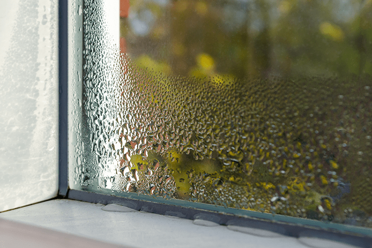 Condensation on a window causing humidity in Southampton, PA